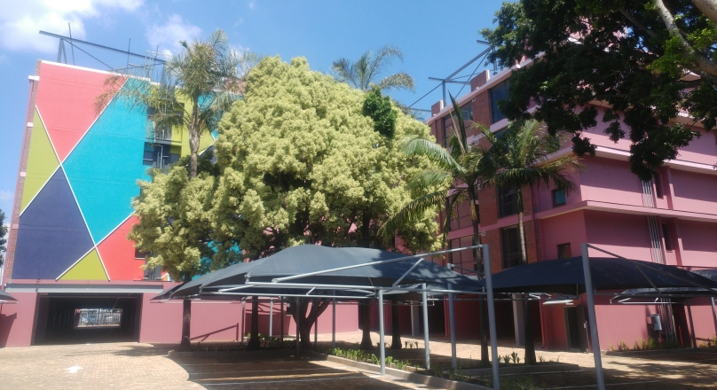 Palm Grove: Unit 111