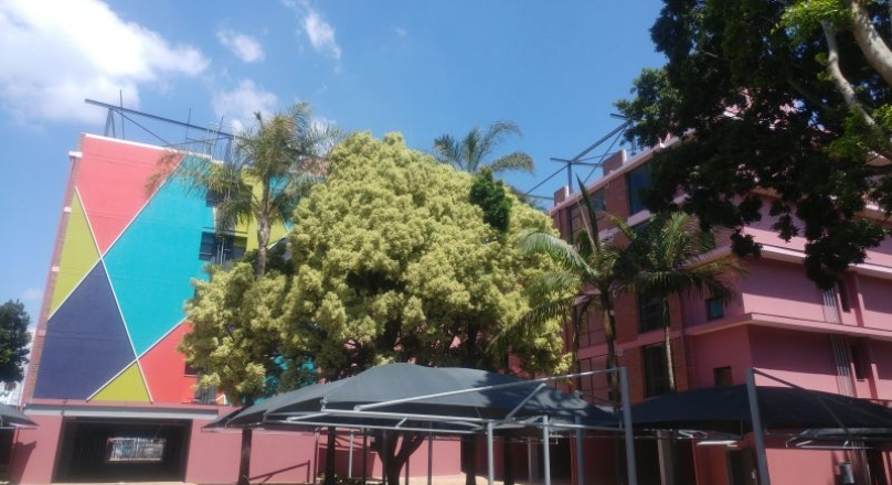 Palm Grove: Unit 212 - First Month rent Free, Electricity Prepaid rates