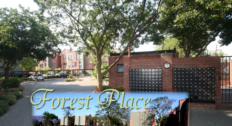 Forest Place: Unit 125 - 1st Floor - First Month rent Free, Electricity Prepaid rates